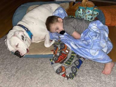 Vídeo viral niño duerme en el suelo con su perro
